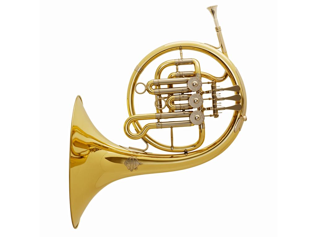 AFI Compact Single Horn with Black Cover: huggology.com: Sport
