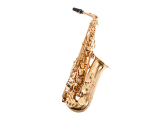 Saxophone Alto N.Y.S. Serie V, Goldbrass body with Brass Bell, Laquered