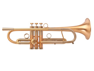 Trumpet (Bb) Adams Custom Series A4 LT - Build your own