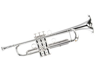 Conn Bb Trumpets buy, order or pick-up? Best prices!