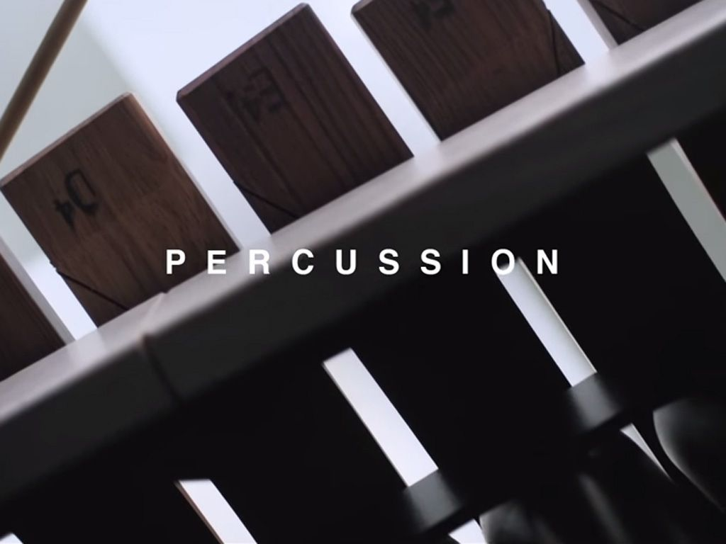 The Invisible Made Audible: Percussion